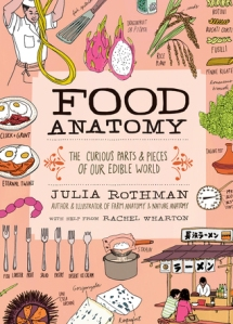 food-anatomy