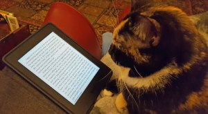 "Elf ""reading"" my Kindle for March in review"